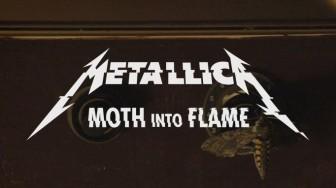 Metallica Yeni Albümden Bir Şarkı Daha Yayımladı
